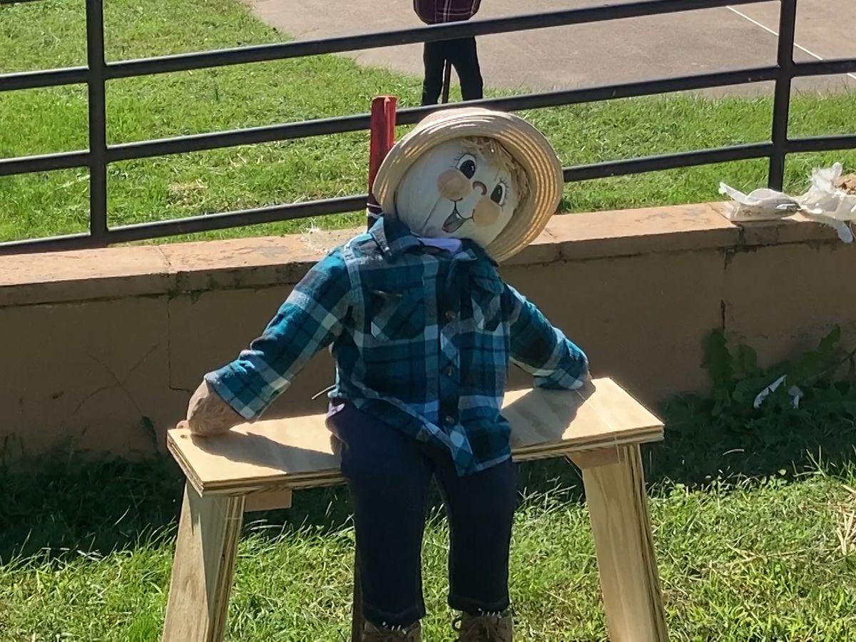 Scarecrows in the Park underway in Staunton