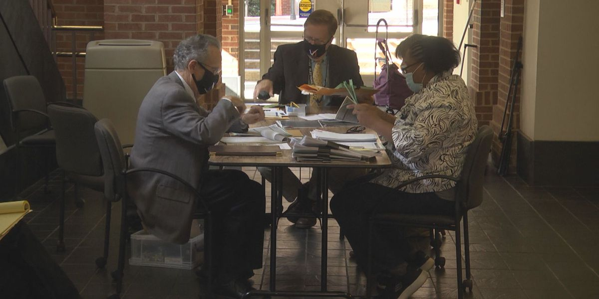 Board counts Charlottesville's provisional ballots, certify results