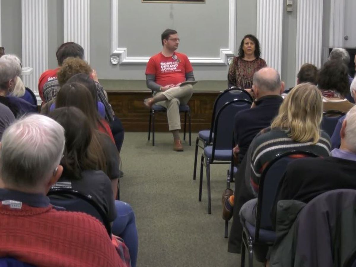 Albemarle County Democrats hold breakfast to discuss gun control legislation