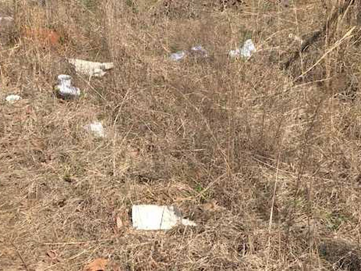 VDOT calls for litter-free roadways in recognition of Earth Day