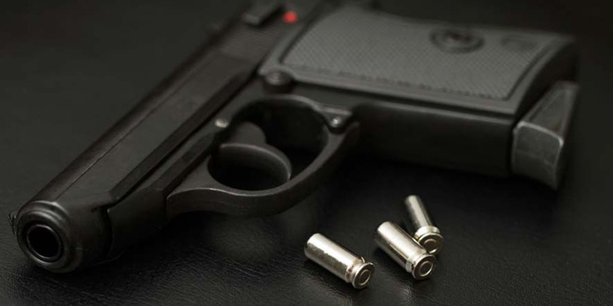 New law removes online option for concealed carry permit