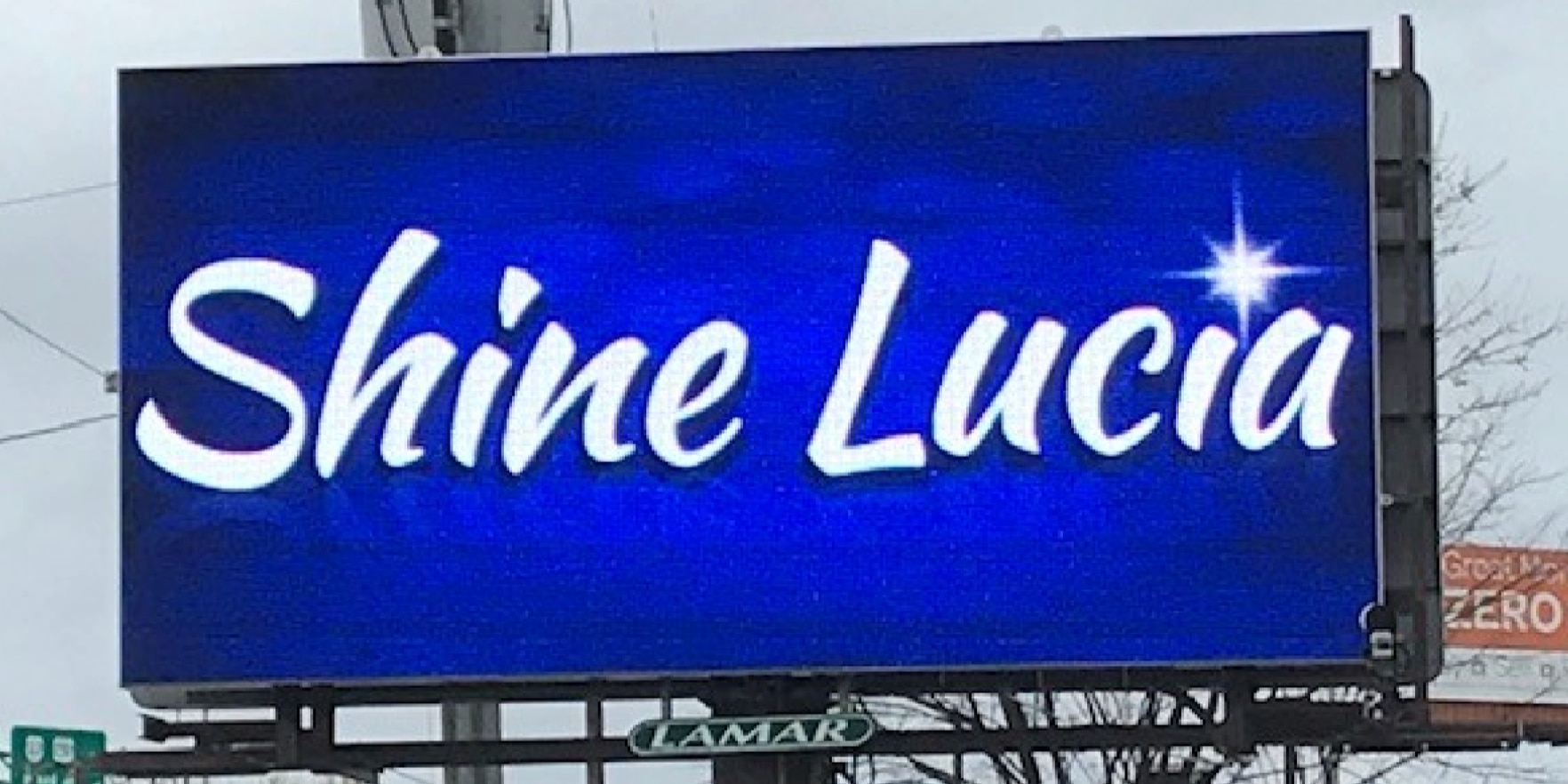 Two-dozen billboards pay tribute to Henrico teen, Lucia Bremer