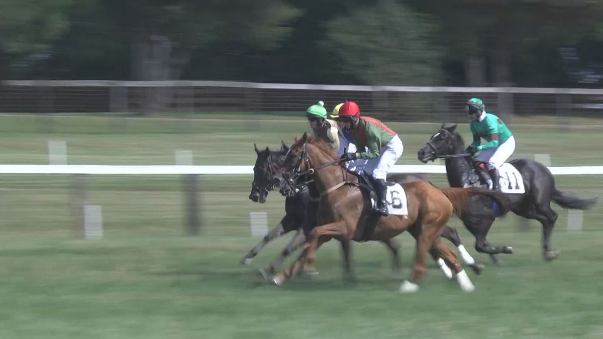 Foxfield Spring races canceled, tickets for the fall on sale in June
