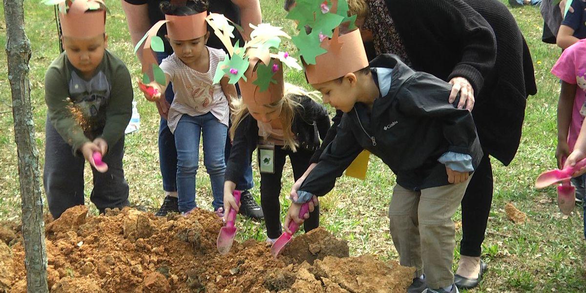 Staunton preschoolers help plant a tree for Arbor Day