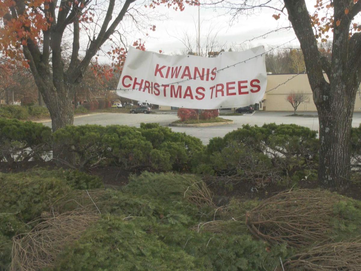 Kiwanis Club Christmas tree sale begins in Charlottesville