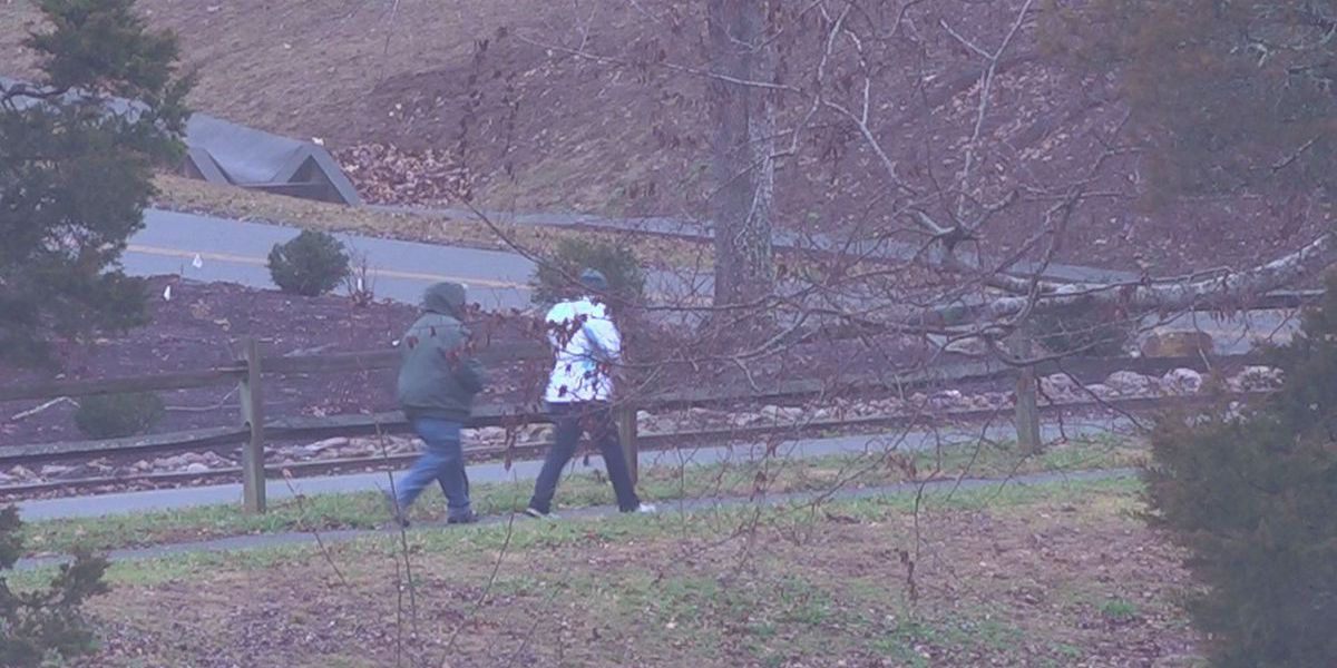 Virginia State Parks offer First Day hikes