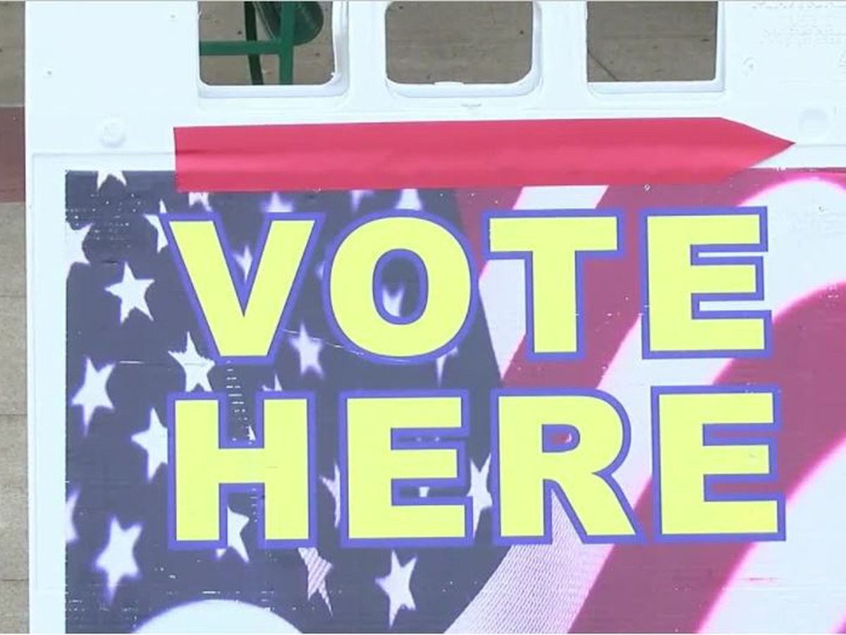Charlottesville and Albemarle County officials warn against intimidation or harassment at the polls