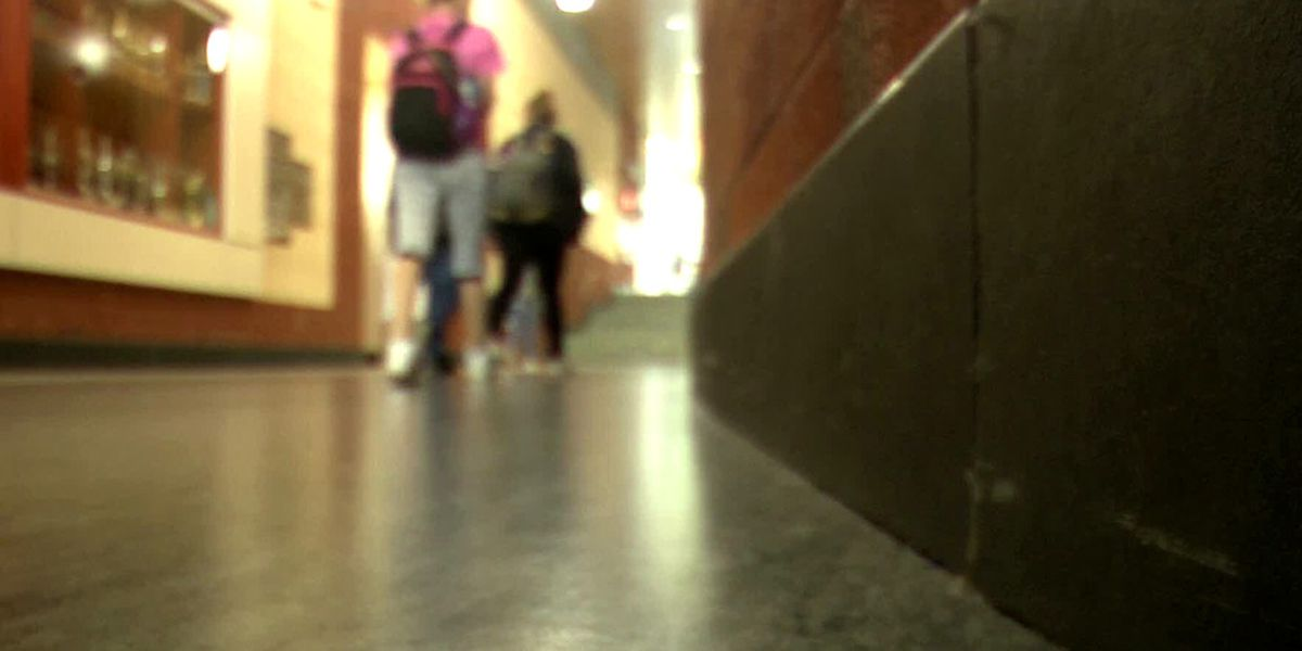 Fluvanna County Public Schools increases security after online threat
