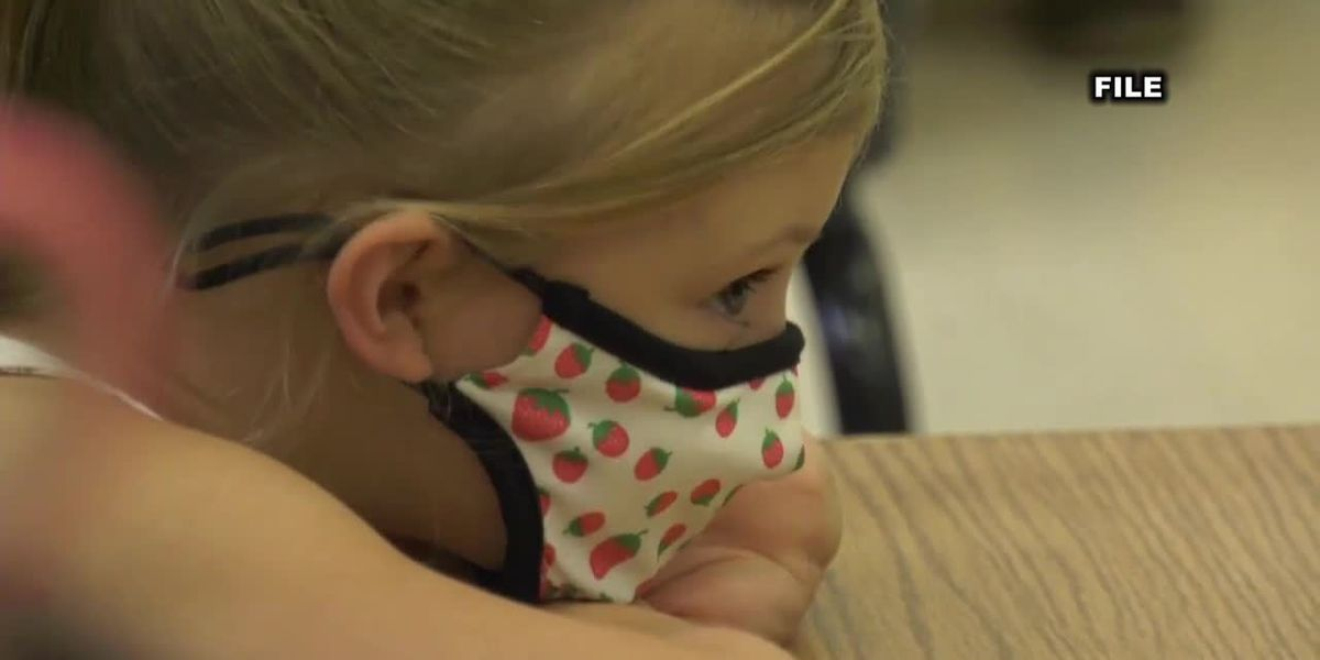 Virginia Early Childhood Foundation gives Charlottesville area grant to improve education