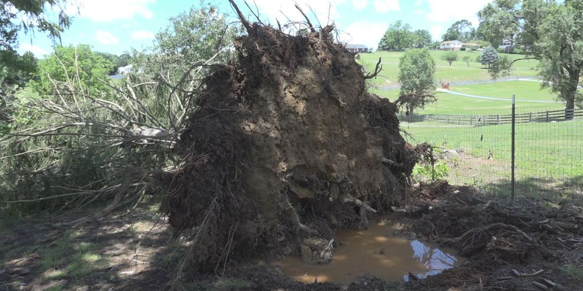 Storm in Staunton causes damages on private property