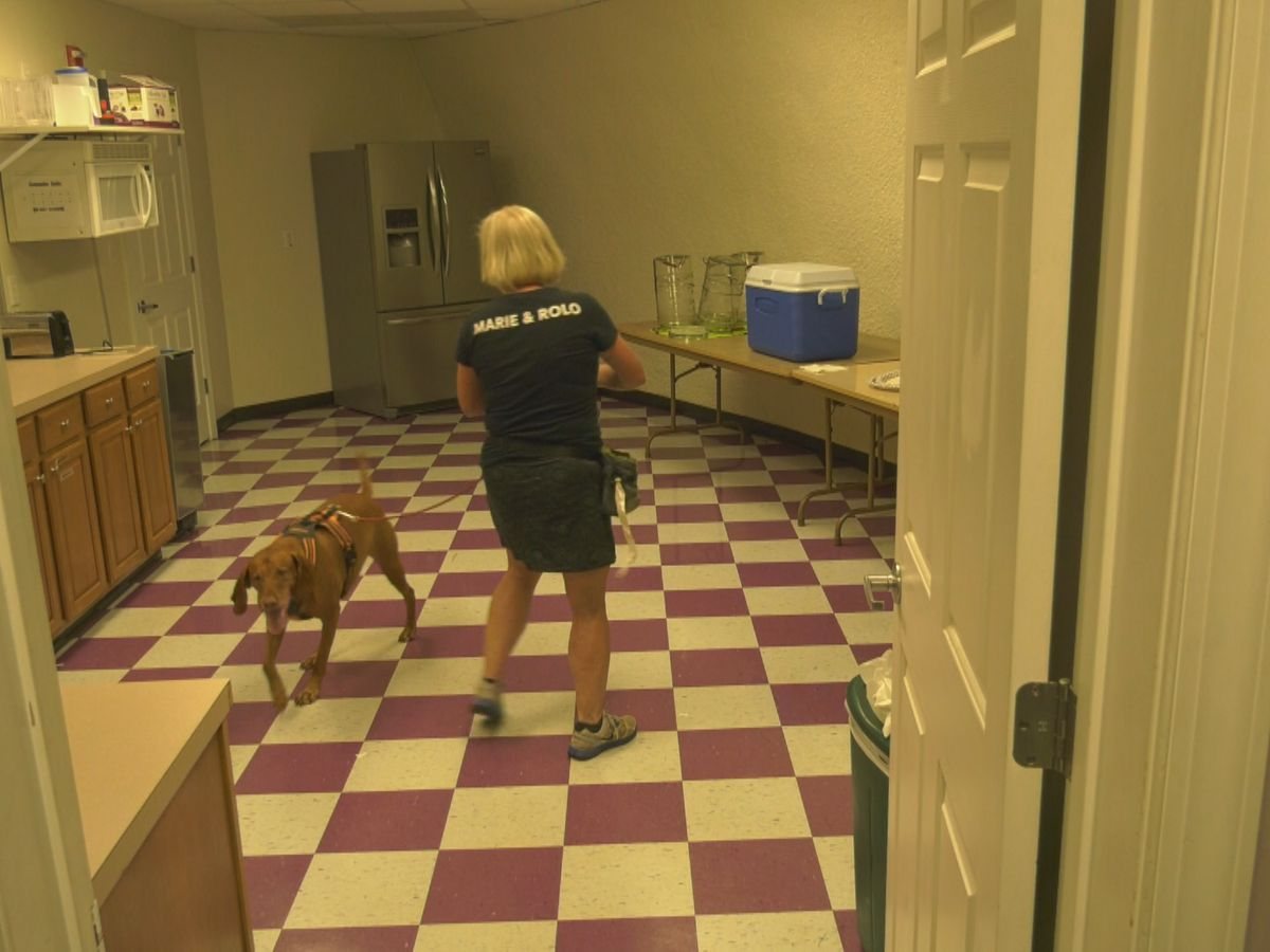 K9 Sniff and Go Fundraiser held in Palmyra