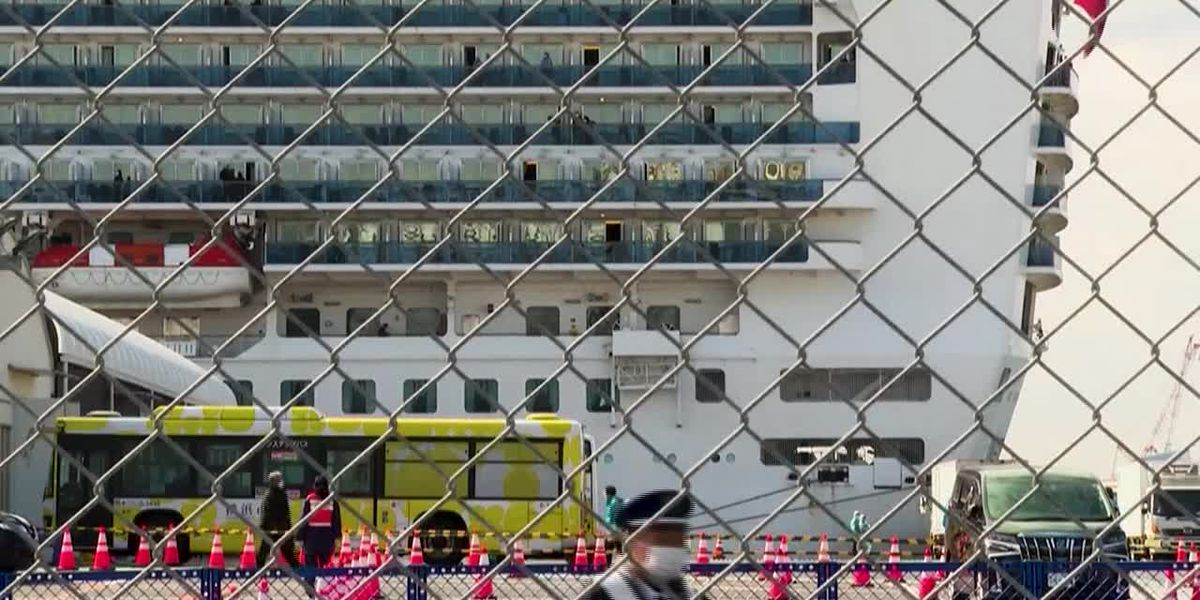 Passengers disembark cruise ship in Japan among worries over quarantine