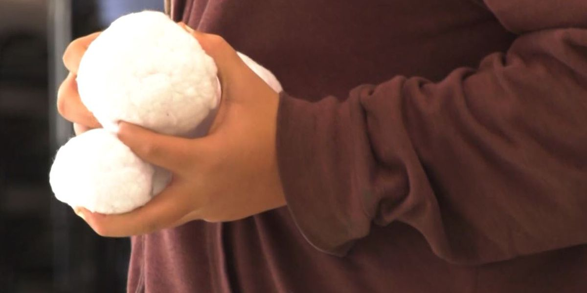 JMRL hosts snowball fight Saturday afternoon