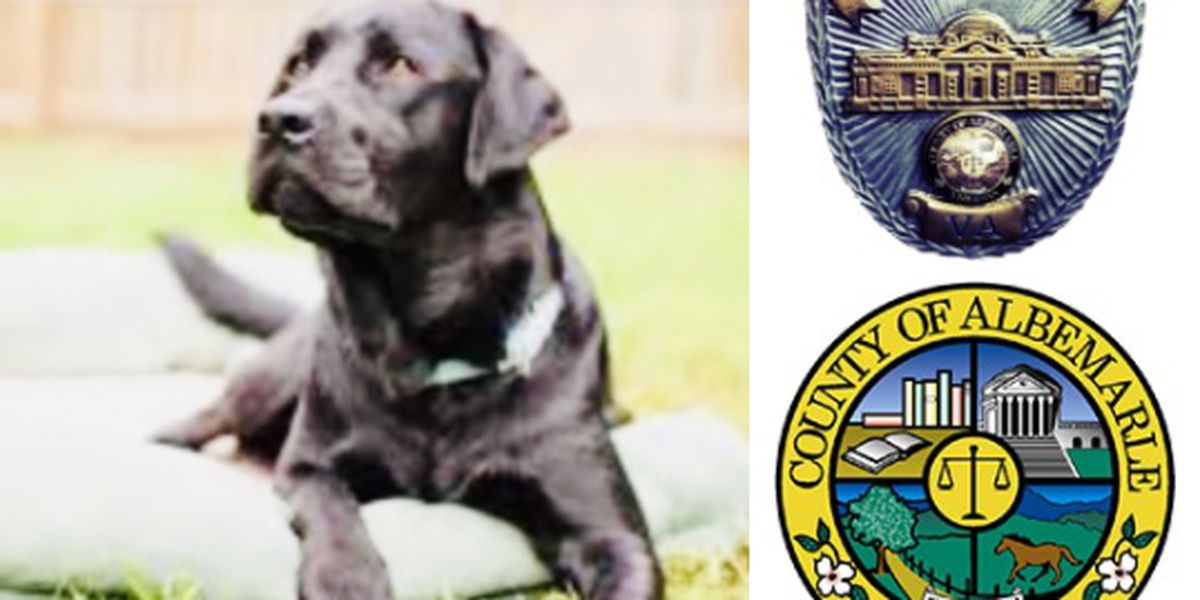 ACPD mourns loss of K-9 Theo
