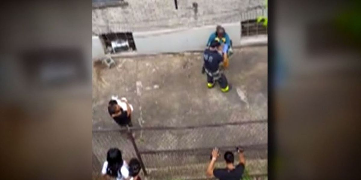 Mother throws 2 young children out NYC window before jumping