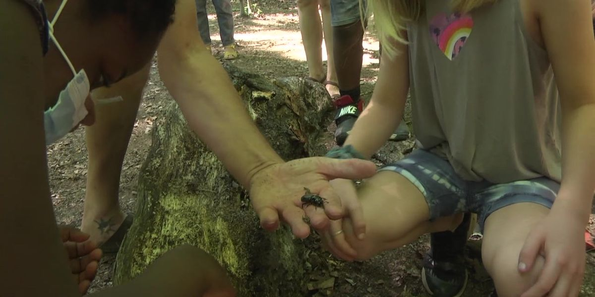 Charlottesville students building outdoor trails and activity spaces