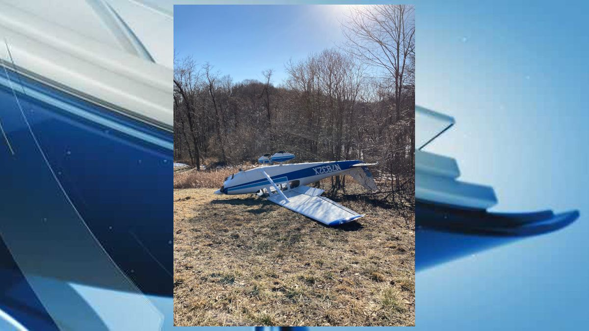 Pilot has minor injuries after small plane crash near Winchester
