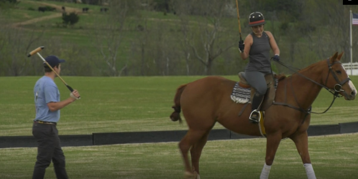 King Family Vineyard offering polo lessons