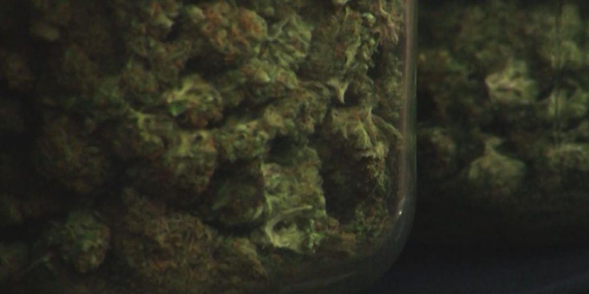 Central Virginia prosecutors discuss how marijuana legalization will impact the legal system