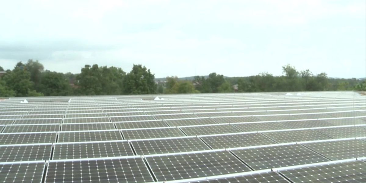 Staunton leaders consider use of solar panels on homes