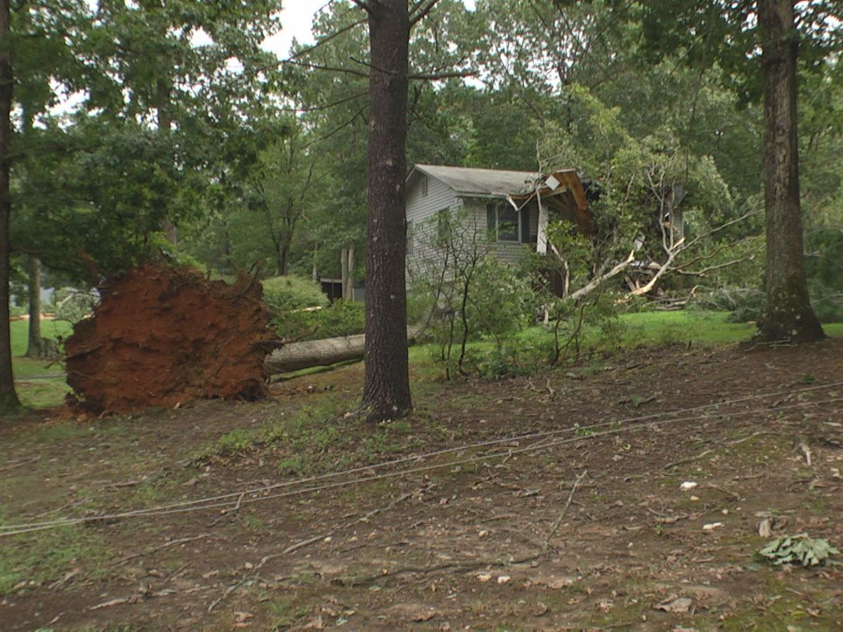 Earlysville sees damage, power outages following Thursday storms