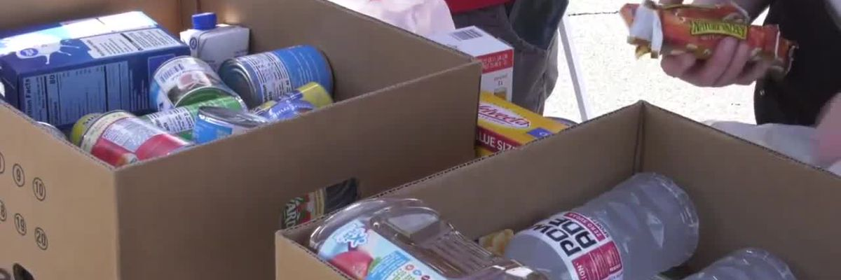 Rotary Club of Fluvanna Co. collecting food for those struggling during pandemic