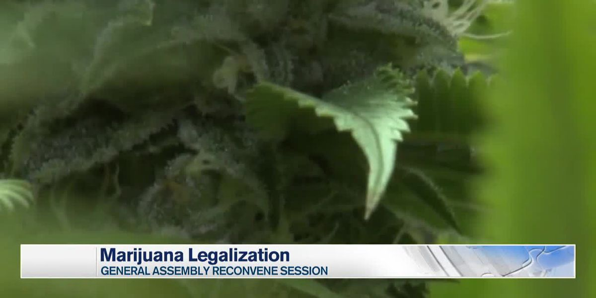 General Assembly sets marijuana legalization for July 1