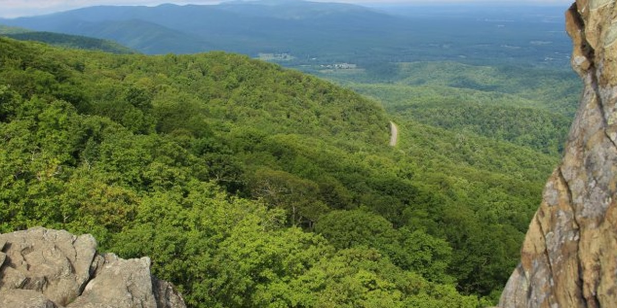 Tourism revenue reached $1.57 billion in the Shenandoah Valley in 2019