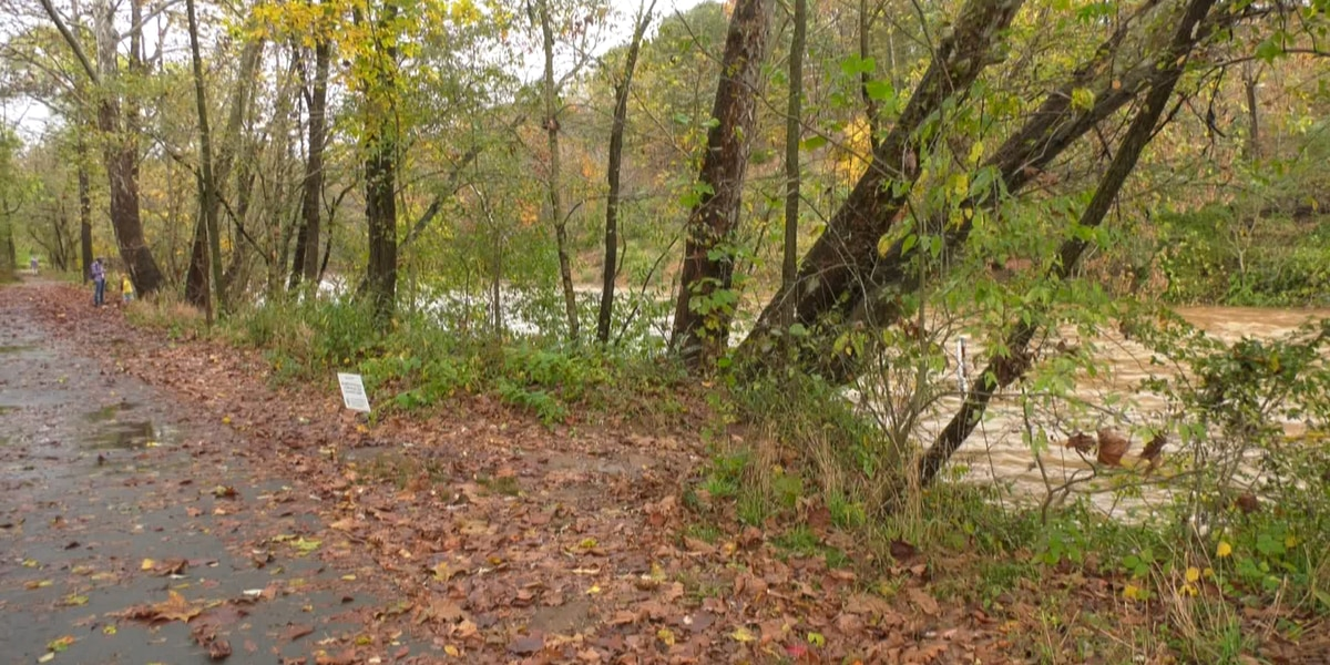 Potential bike / pedestrian path over Rivanna River near Riverview Park discussed