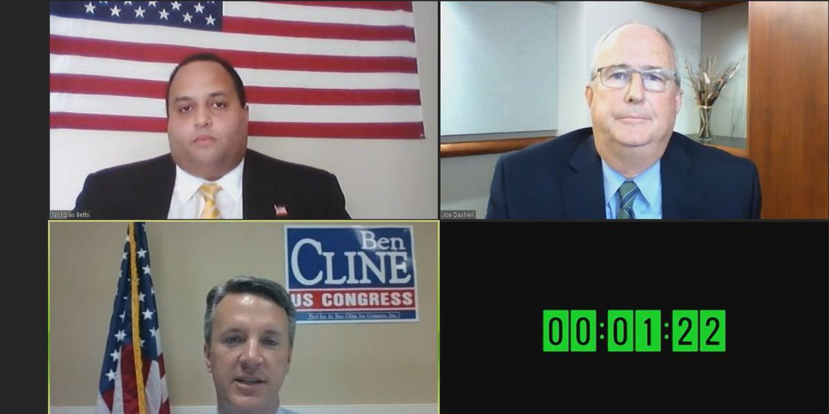 Va's 6th District Congressional candidates meet in virtual debate
