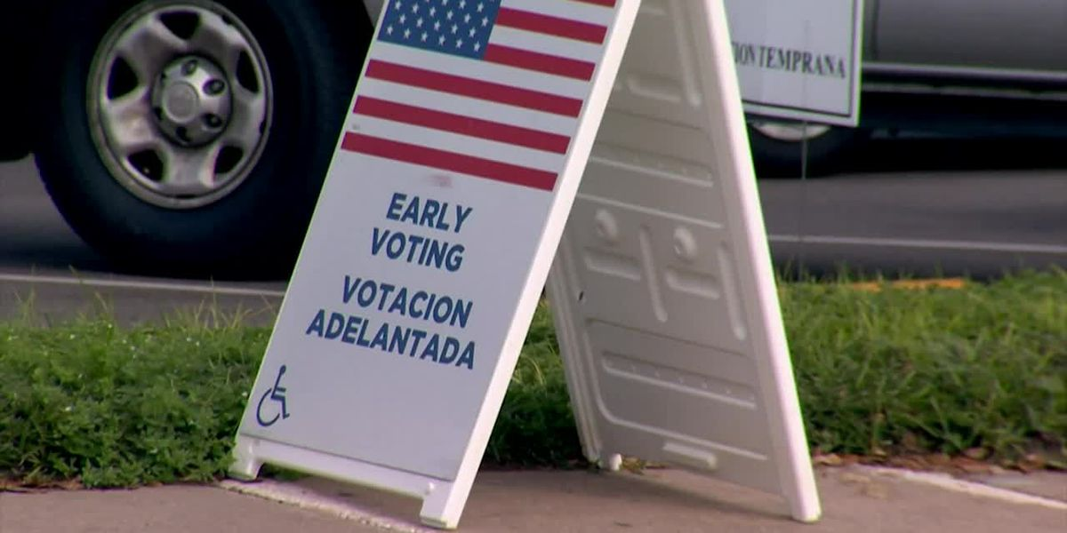 Woman goes into labor, but stops to vote