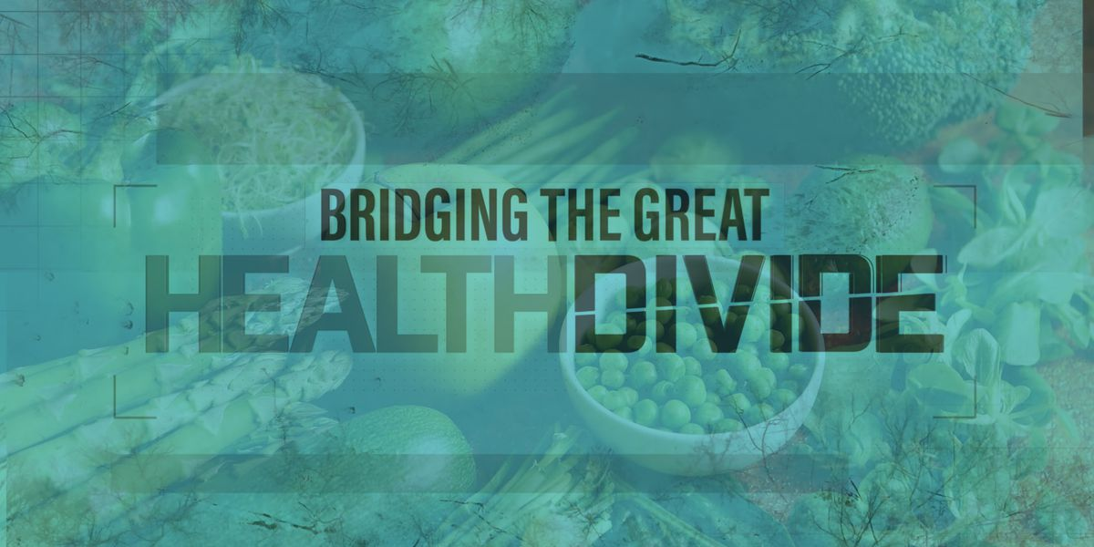 Bridging the Great Health Divide: Access to Food
