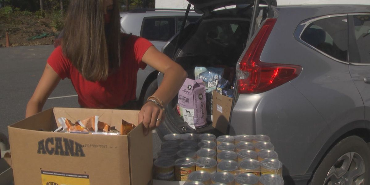 Albemarle High students are finding unconventional ways to help combat hunger