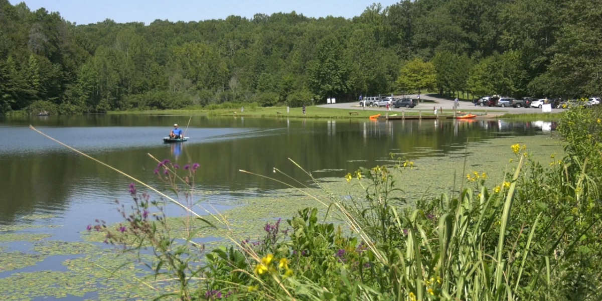 Central Virginians celebrate Labor Day in area parks