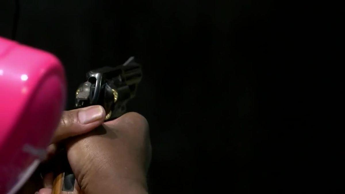 Virginia Senate committee approves background checks on gun rentals