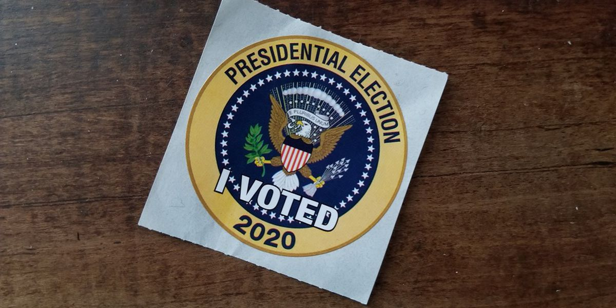 Record voter turnout ahead of Virginia 2020 Presidential election
