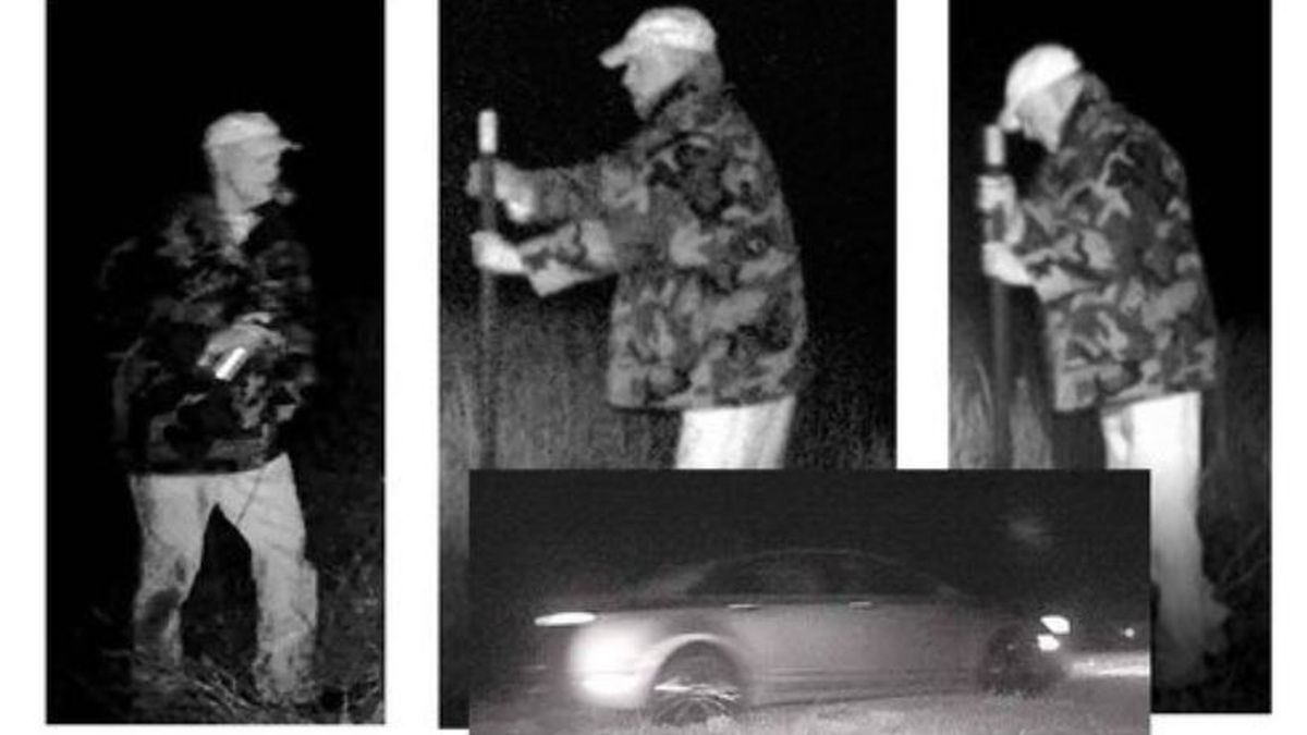 Reward offered for information on man stealing, vandalizing political signs in Louisa County