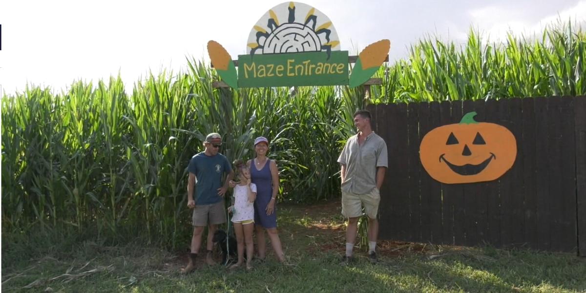 Blue Ridge Mountain Maze opens in Nelson County