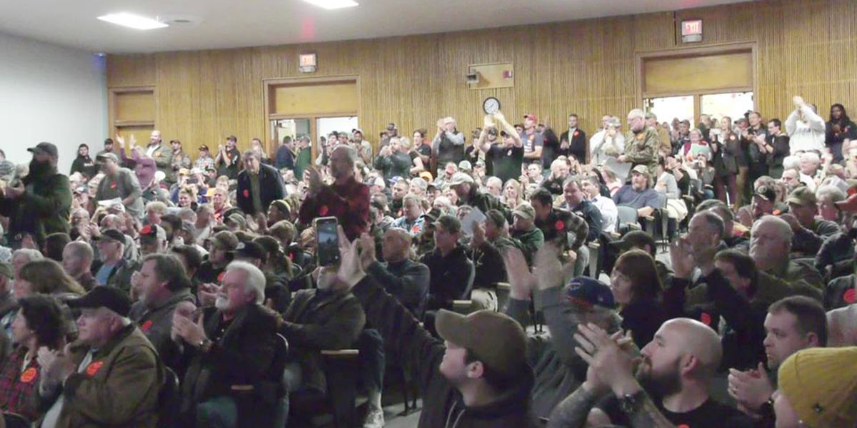Fluvanna County Board of Supervisors vote 3-2 to become a Second Amendment sanctuary