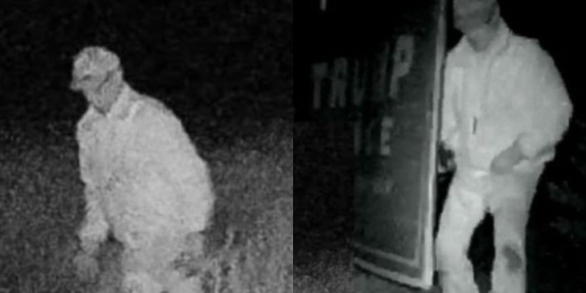 Police looking for man caught on camera stealing Trump campaign signs in Louisa County